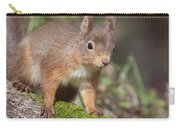 Red Squirrel - Scottish Highlands   #23 Carry-all Pouch