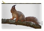 Red Squirrel Transparent Carry-all Pouch