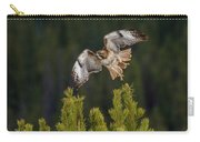 Red-tail Flight At Sunset Carry-all Pouch