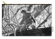 Red Tail Hawk In Black And White Carry-all Pouch by Deleas Kilgore