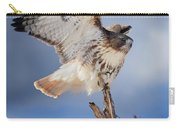Red Tail Hawk Perch Carry-all Pouch
