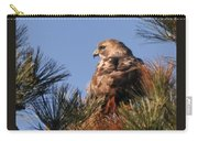 Red Tail In The Pines Carry-all Pouch