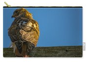 Red Tailed Hawk  IIi  Carry-all Pouch