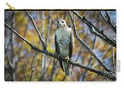Red-tailed Hawk In The Fall Carry-all Pouch