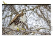 Red Tailed Hawk,  Carry-all Pouch