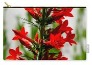 Red Texas Plume Flowers Carry-all Pouch