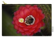 Red Torch Cactus-echinopsis  Carry-all Pouch