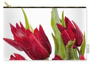 Red Tulip Heads Sprinkled Carry-all Pouch
