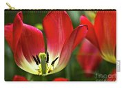 Red Tulips Petals Carry-all Pouch