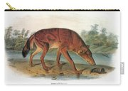 Red Wolf (canis Lupus) Carry-all Pouch
