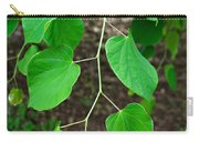 Redbud Green Carry-all Pouch
