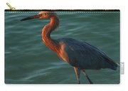 Reddish At Sunset Carry-all Pouch