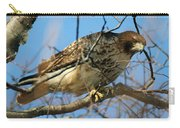 Redtail Among Branches Carry-all Pouch