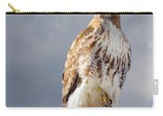 Redtail Portrait Carry-all Pouch
