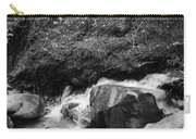 Redwood Rushing Stream 2  Carry-all Pouch