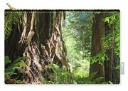 Redwood Tree Art Prints Redwoods Forest Carry-all Pouch