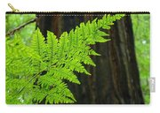 Redwood Tree Forest Ferns Art Prints Giclee Baslee Troutman Carry-all Pouch