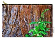 Redwood Tree Trunk At Pilgrim Place In Claremont-california   Carry-all Pouch