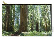 Redwood Trees Forest California Redwoods Baslee Carry-all Pouch