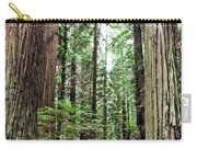 Redwood5 Carry-all Pouch