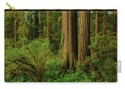 Redwoods And Ferns Carry-all Pouch