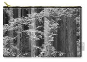 Redwoods Ir 0625 Carry-all Pouch