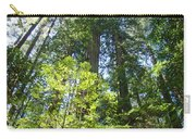 Redwoods Trees Forest Art Prints Baslee Troutman Carry-all Pouch