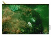 Reef Life Off Hawaii Carry-all Pouch