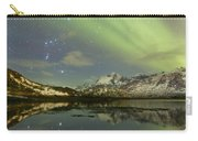 Reflected Orion Carry-all Pouch
