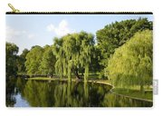 Reflections Carry-all Pouch by Corinne Rhode