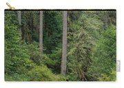 Reflections In Silver Falls State Park Carry-all Pouch