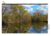 Reflective Cloudy Palatine, Il,  Library Pond Carry-all Pouch