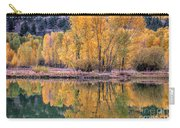 Reflecton Before Sunrise Carry-all Pouch