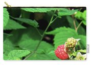 Remembering One Sweet Rasberry Carry-all Pouch
