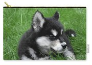 Resting Alusky Puppy Laying In Green Grass Carry-all Pouch