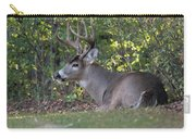 Resting Buck Carry-all Pouch