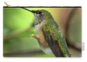 Resting Hummingbird Carry-all Pouch