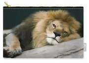 Resting Lion Carry-all Pouch