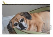 Resting Pooch  Carry-all Pouch