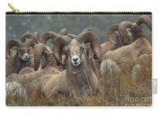 Resting Rams Carry-all Pouch