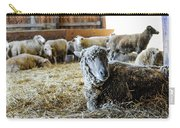 Resting Sheep Carry-all Pouch