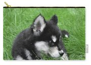 Resting Two Month Old Alusky Puppy Dog In Grass Carry-all Pouch