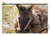 Resting Wallaby Carry-all Pouch