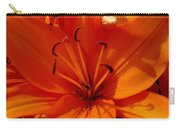 Retreating Orange Lilies Carry-all Pouch