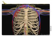 Rib Cage With Nerves, Arteries Carry-all Pouch