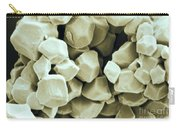 Rice Starch Granules Carry-all Pouch