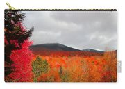 Rich Fall New Hampshire Colors Carry-all Pouch