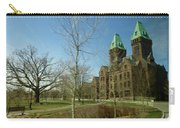 Richardon Olmsted Complex, Buffalo Carry-all Pouch