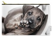 Ridgeback Paw Carry-all Pouch