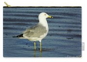 Ringed Billed Sea Gull Carry-all Pouch